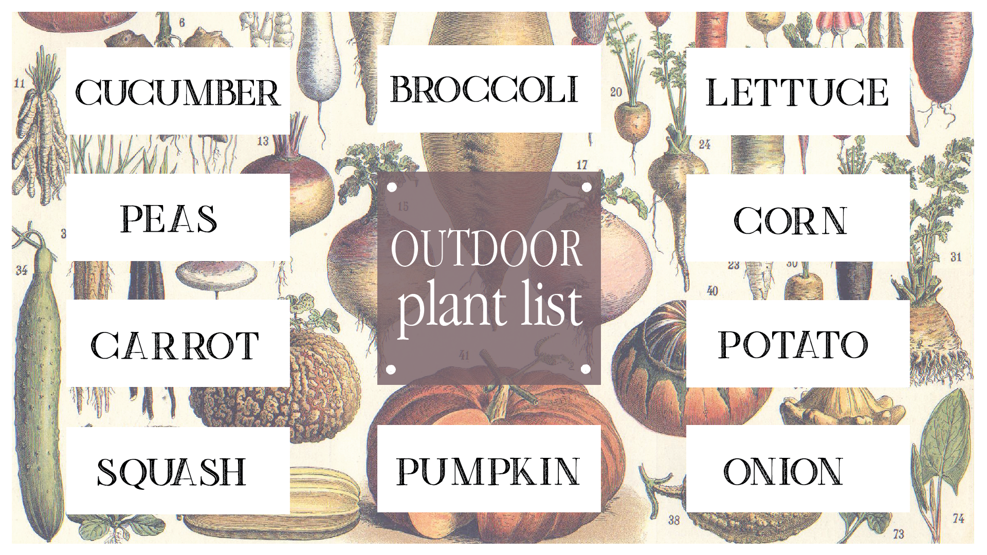 Boroughfare Home Garden Post Outdoor Seed Planting List