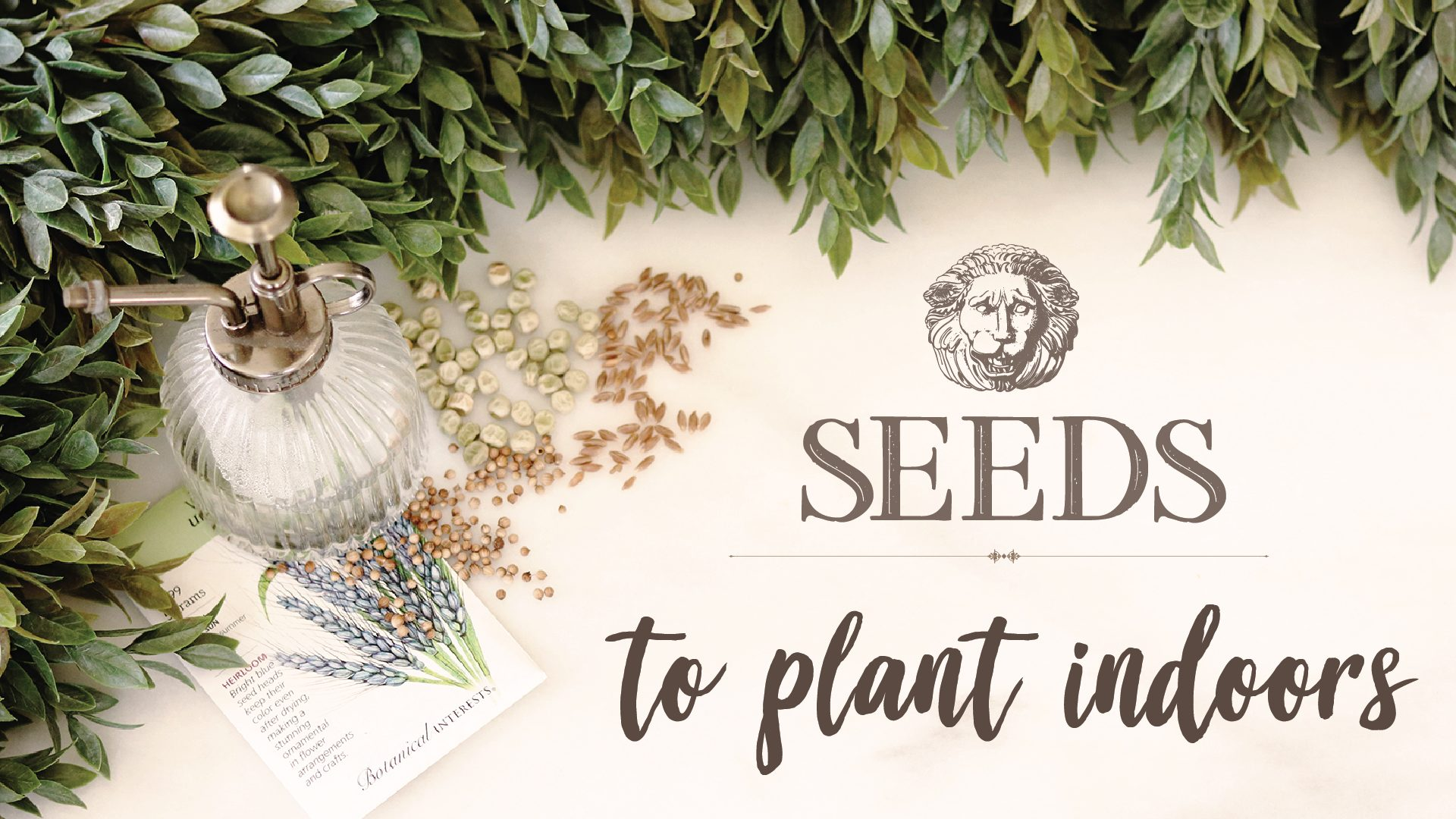 Boroughfare Home Garden Post What Seed to Plant Indoors