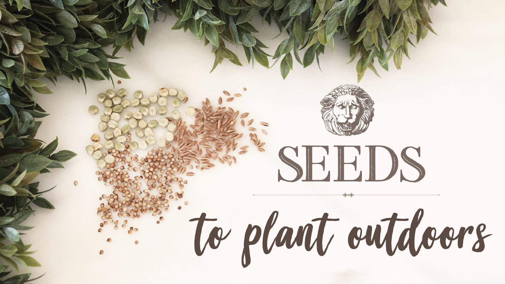 Boroughfare Home Garden Post Seeds to Plant Outdoors Image