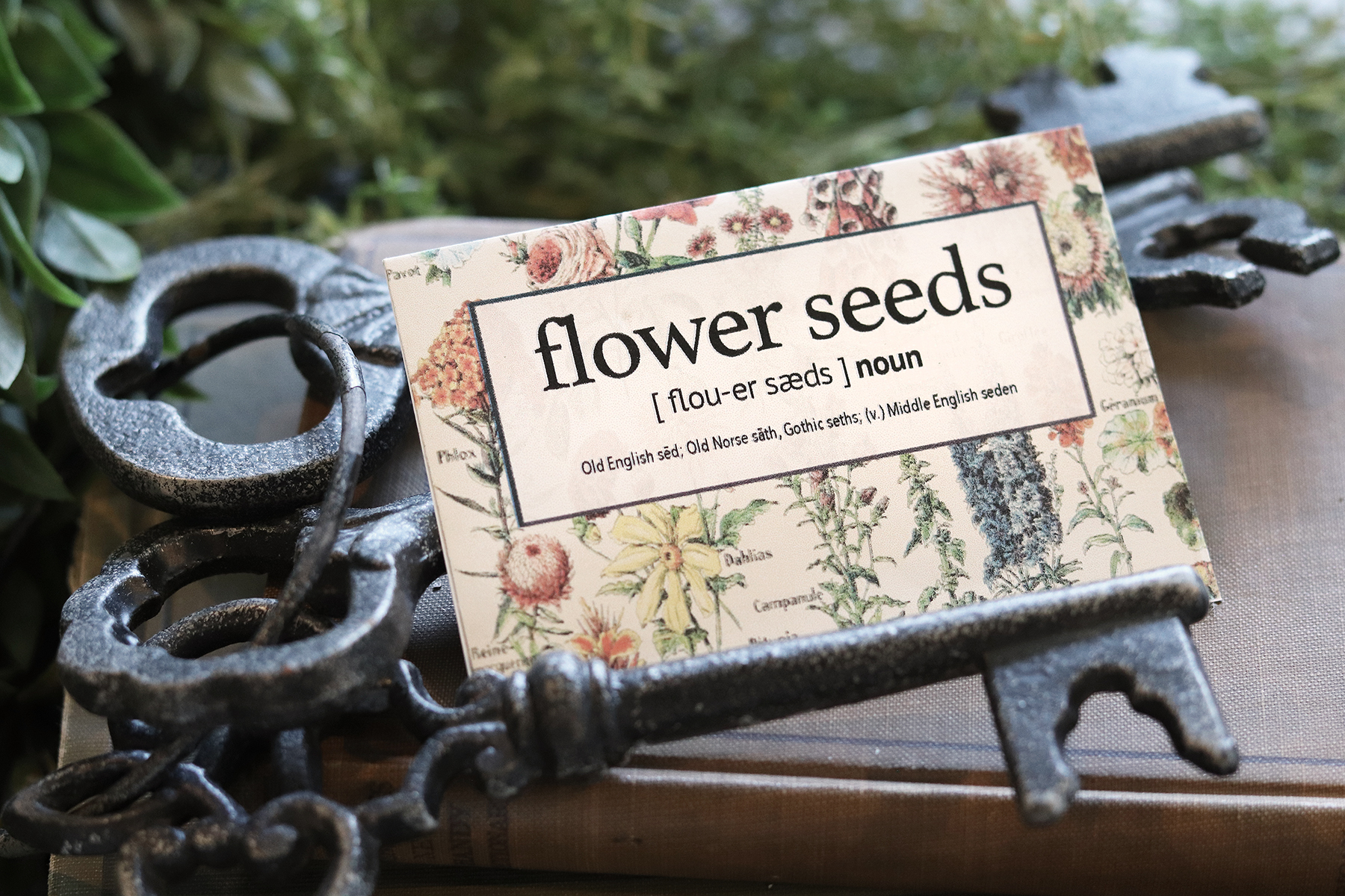 Boroughfare Home Cottage Flower Seed Packet with Keys