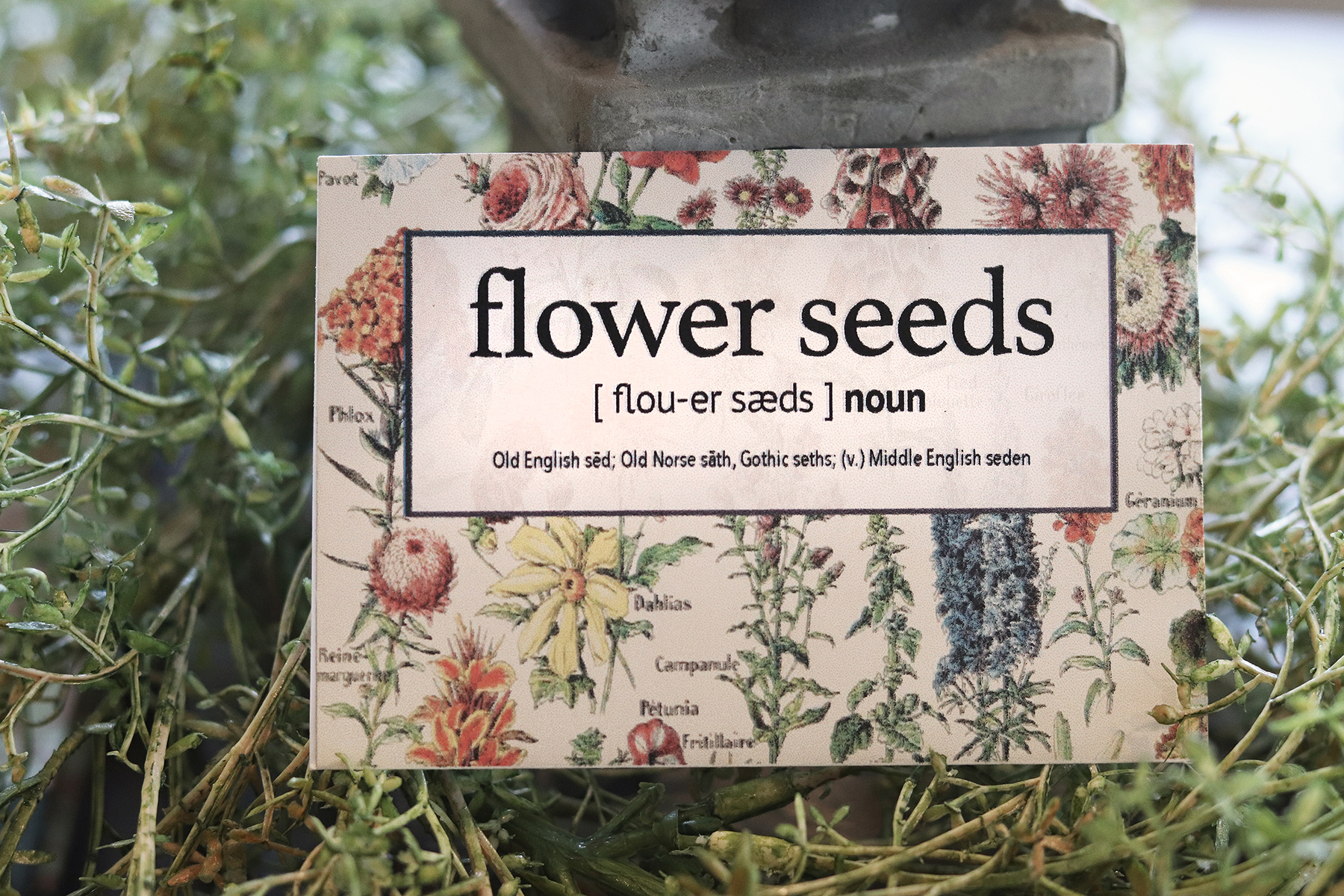Boroughfare Home Cottage Flower Seed Packet Final Image