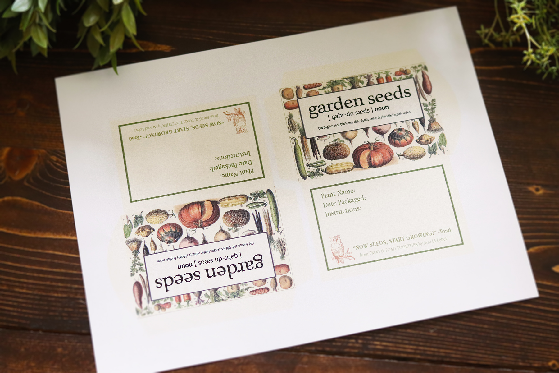 Boroughfare Home Cottage Garden Seed Packet Design Uncut