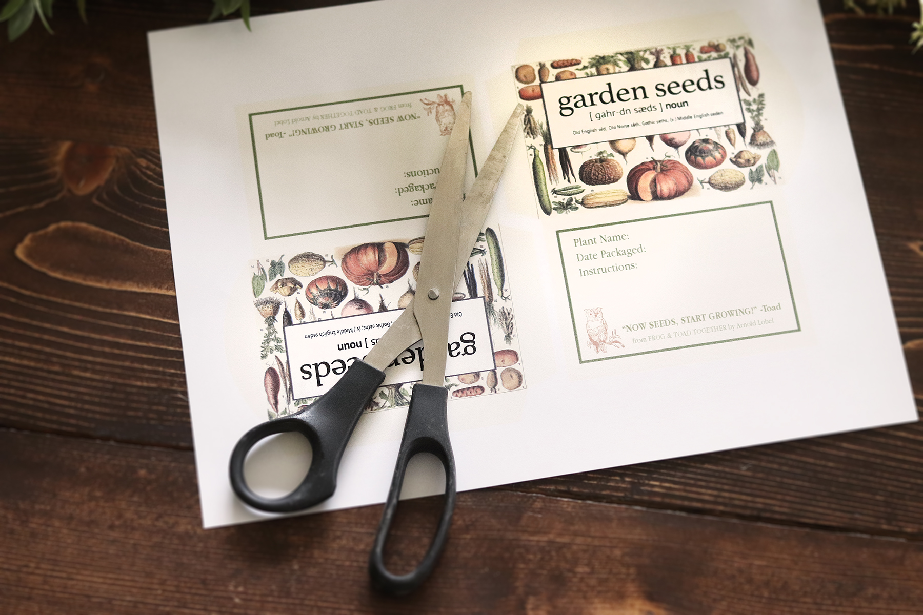 Boroughfare Home Cottage Garden Seed Packet with Scissors